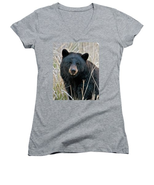 Black Bear Closeup Women's V-Neck (Athletic Fit)