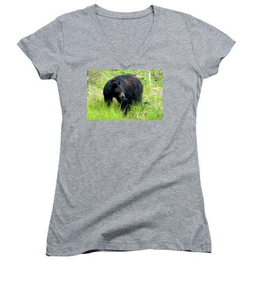 Black Bear Women's V-Neck