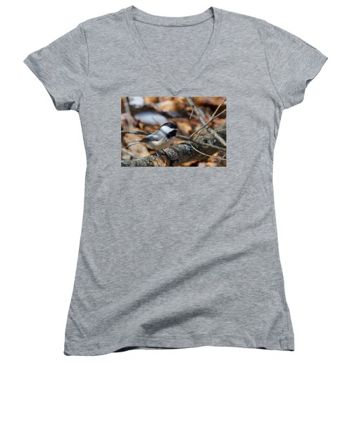 Black-capped Chickadee 0571 Women's V-Neck T-Shirt (Junior Cut) by Michael Peychich
