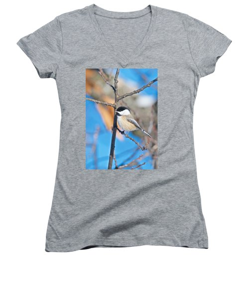 Black Capped Chickadee 1140 Women's V-Neck T-Shirt (Junior Cut) by Michael Peychich