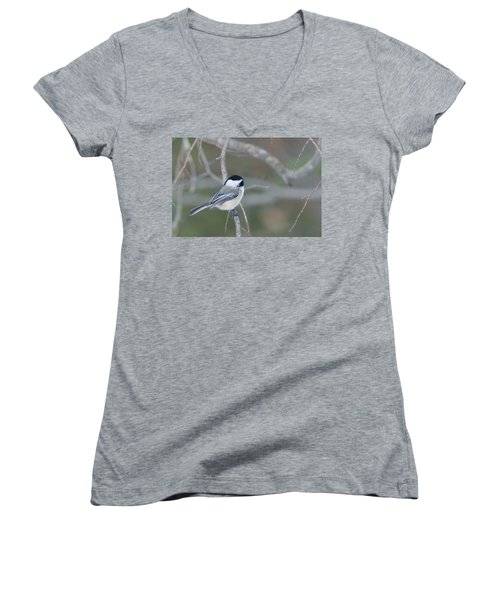 Black Capped Chickadee 1379 Women's V-Neck T-Shirt (Junior Cut) by Michael Peychich