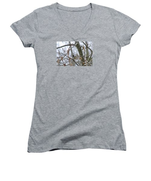 Women's V-Neck T-Shirt (Junior Cut) featuring the photograph Black-capped Chickadee 20120321_38a by Tina Hopkins