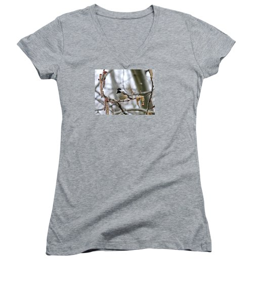 Women's V-Neck T-Shirt (Junior Cut) featuring the photograph Black-capped Chickadee 20120321_39a by Tina Hopkins