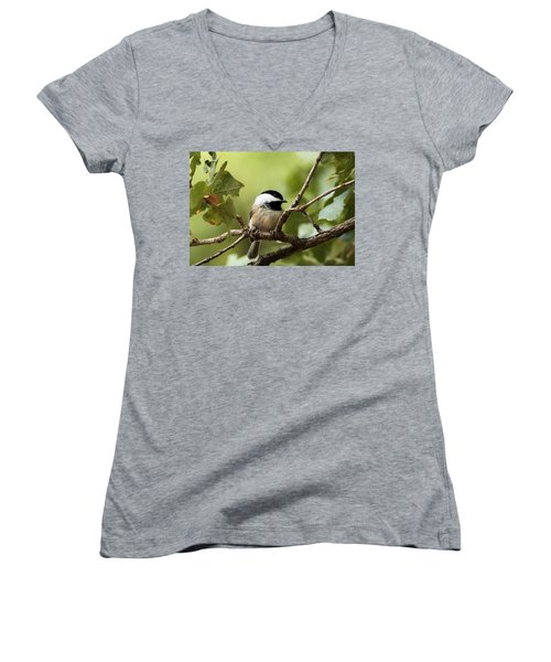Black Capped Chickadee On Branch Women's V-Neck