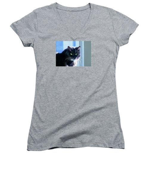 Black Cat In Sun Women's V-Neck