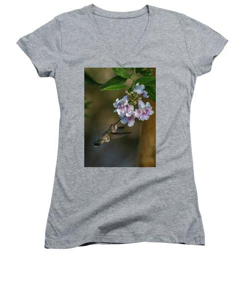 Black-chinned Hummingbird Women's V-Neck T-Shirt (Junior Cut) by Martina Thompson
