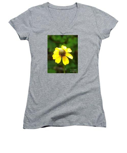 Black-eyed Beauty Women's V-Neck T-Shirt (Junior Cut) by Audrey Van Tassell