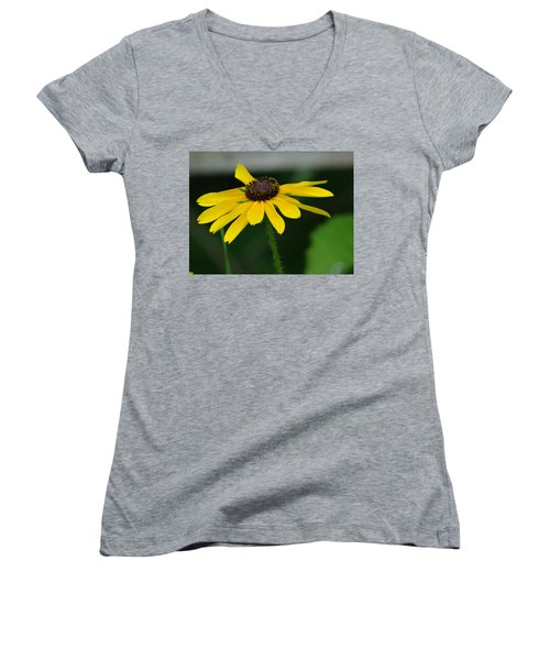 Black Eyed Susan Women's V-Neck (Athletic Fit)