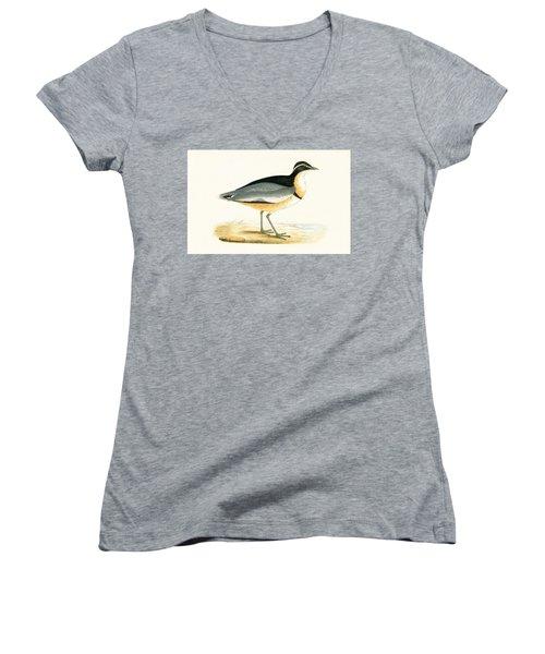 Black Headed Plover Women's V-Neck T-Shirt
