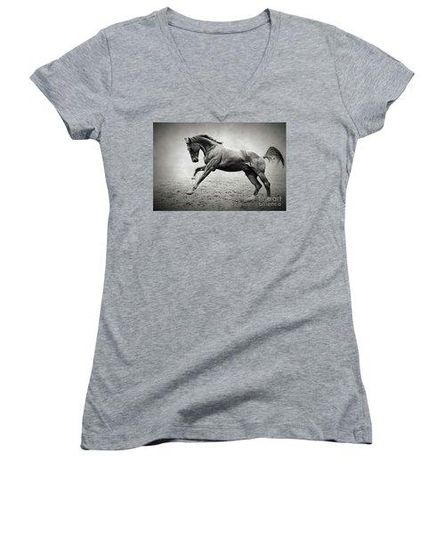 Black Horse In Dust Women's V-Neck T-Shirt