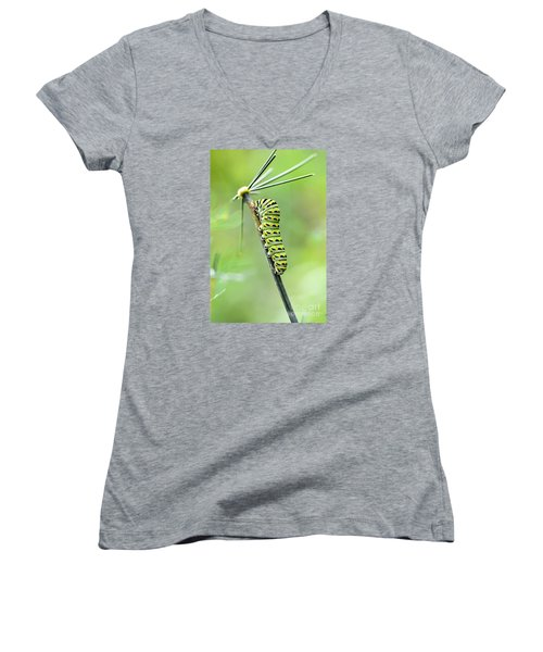 Black Swallowtail Caterpillar Women's V-Neck T-Shirt (Junior Cut) by Debbie Green