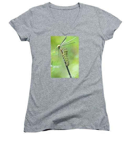 Black Swallowtail Caterpillar Women's V-Neck T-Shirt