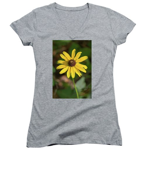 Blackeyed Susan Women's V-Neck T-Shirt
