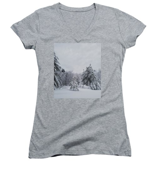 Blizzard In New England Women's V-Neck (Athletic Fit)