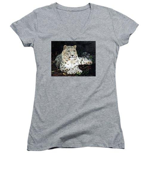 Blizzard Women's V-Neck T-Shirt (Junior Cut) by Linda Becker