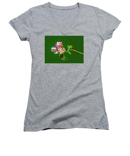 Bloom May 2016 Artistic Women's V-Neck T-Shirt (Junior Cut)