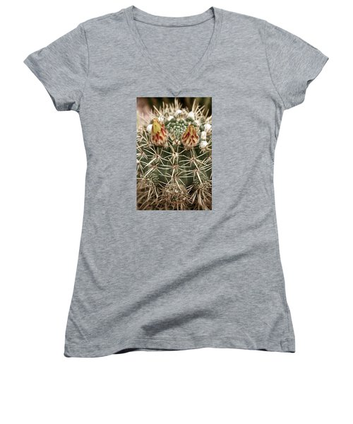 Blooming Cactus1 Women's V-Neck (Athletic Fit)