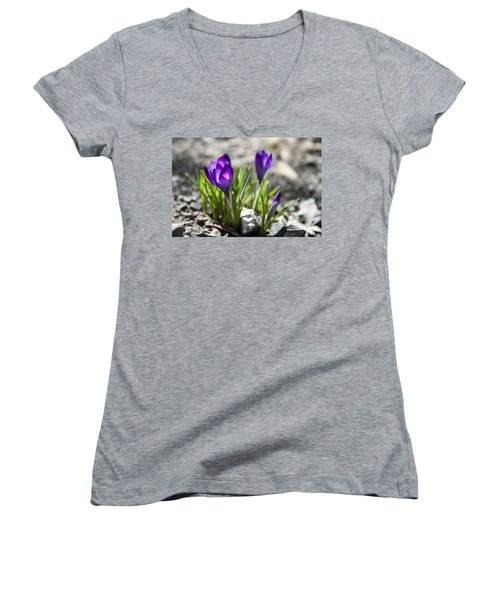 Women's V-Neck T-Shirt (Junior Cut) featuring the photograph Blooming Crocus #1 by Jeff Severson
