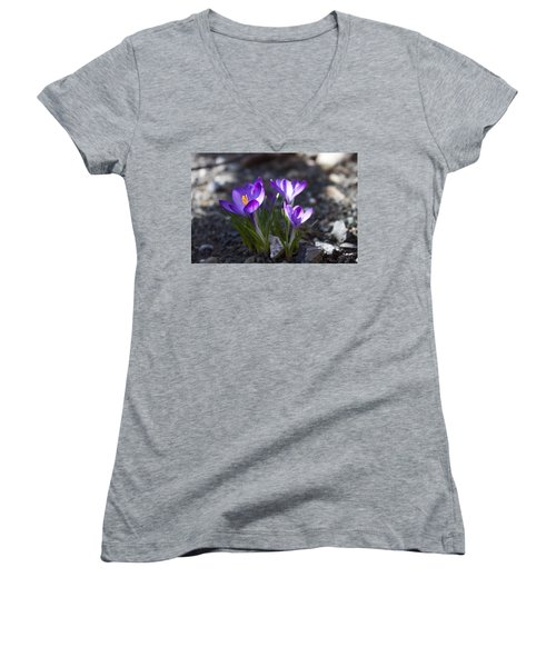 Women's V-Neck T-Shirt (Junior Cut) featuring the photograph Blooming Crocus #3 by Jeff Severson