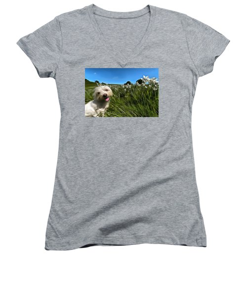 Blooming Daffodils In The Antola Park With Maltese II Paint Women's V-Neck