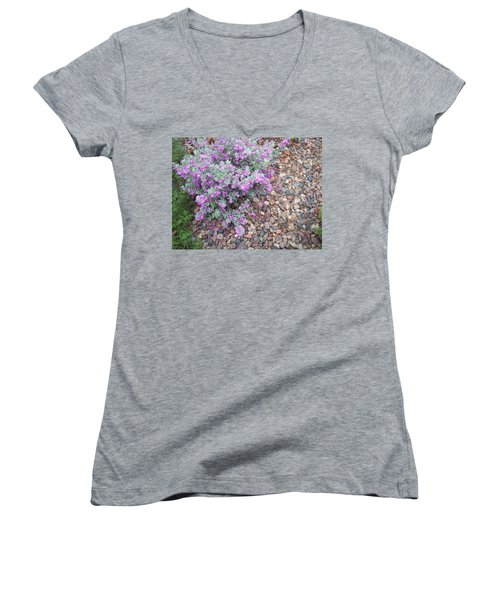 Blooms Women's V-Neck T-Shirt (Junior Cut) by Mordecai Colodner