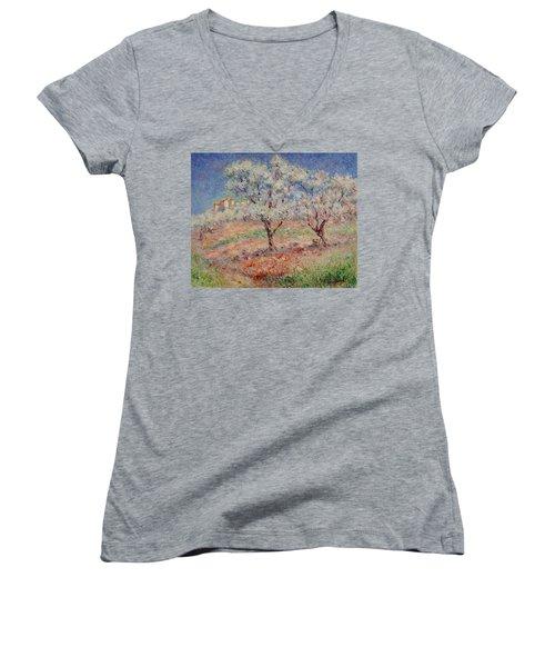 Blossom Trees  Women's V-Neck
