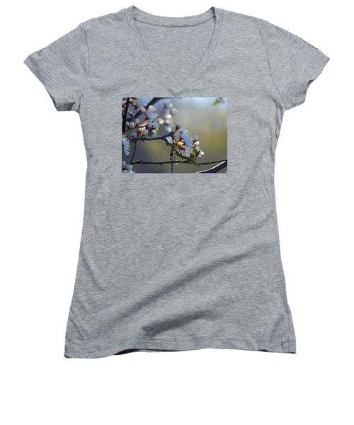 Blossoms Women's V-Neck T-Shirt (Junior Cut) by Betty-Anne McDonald