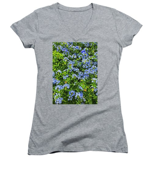 Blossoms Of Phlox Flowers Women's V-Neck (Athletic Fit)
