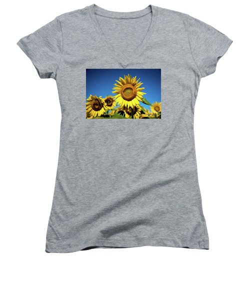 Blue And Gold Women's V-Neck T-Shirt