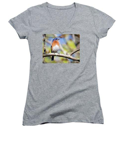 Women's V-Neck T-Shirt featuring the photograph Blue Bird by Ricky L Jones