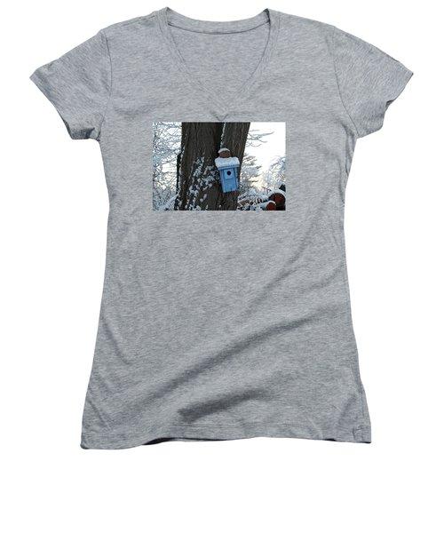 Blue Birdhouse Women's V-Neck T-Shirt