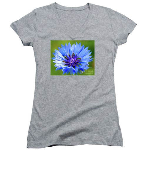 Blue Cornflower Women's V-Neck (Athletic Fit)