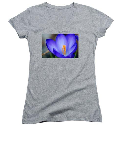 Blue Crocus Women's V-Neck