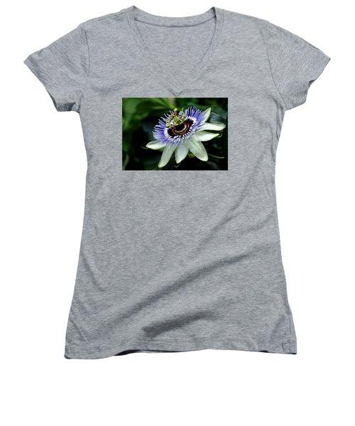 Blue Crown Passion Flower Women's V-Neck T-Shirt (Junior Cut) by Debbie Oppermann