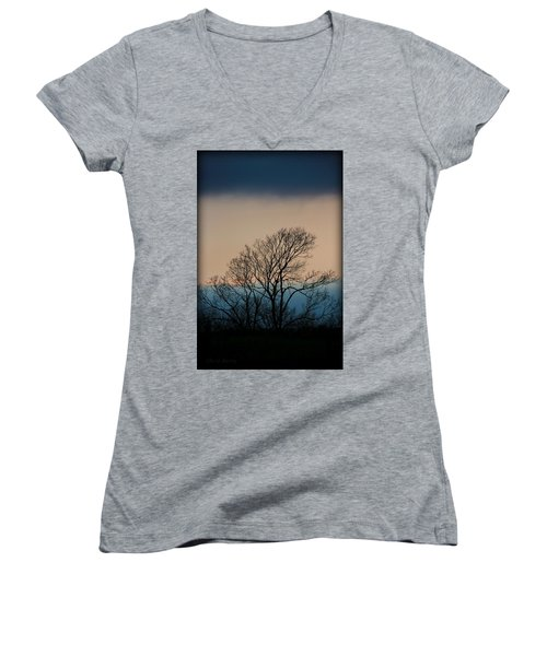 Women's V-Neck T-Shirt (Junior Cut) featuring the photograph Blue Dusk by Chris Berry