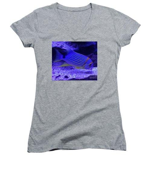 Blue Fish Groupie Women's V-Neck T-Shirt