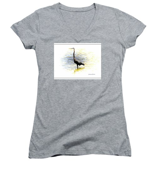 Blue Heron Women's V-Neck (Athletic Fit)