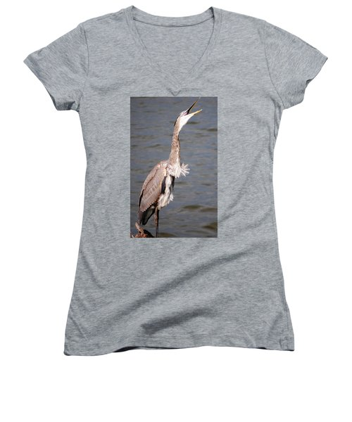 Women's V-Neck T-Shirt (Junior Cut) featuring the photograph Blue Heron Calling by Sumoflam Photography