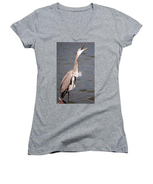 Blue Heron Calling Women's V-Neck (Athletic Fit)
