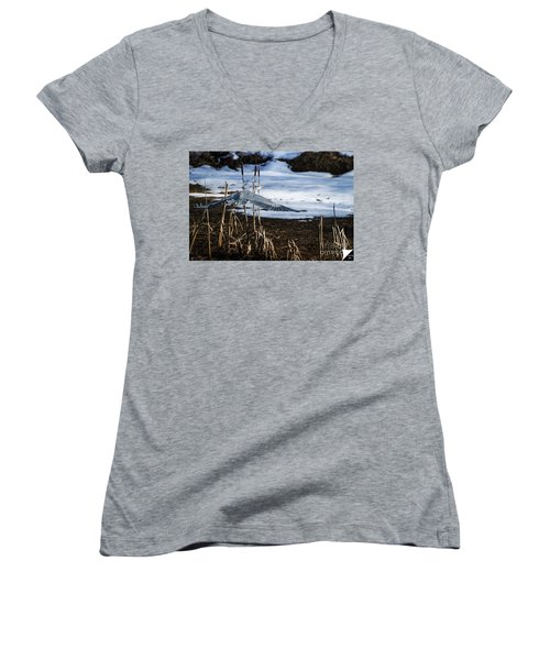 Women's V-Neck T-Shirt (Junior Cut) featuring the photograph Blue Heron by Jim  Hatch