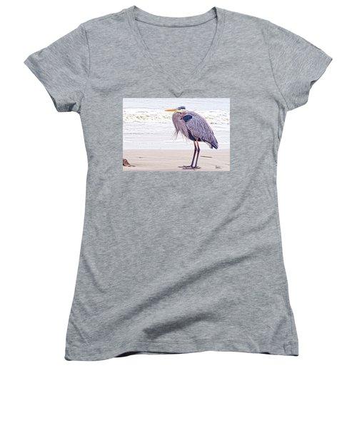 Blue Heron Watching Women's V-Neck