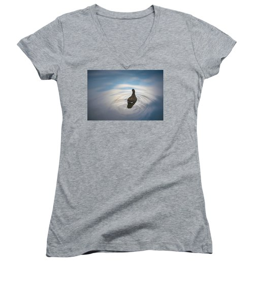Blue Light Moorhen Women's V-Neck T-Shirt
