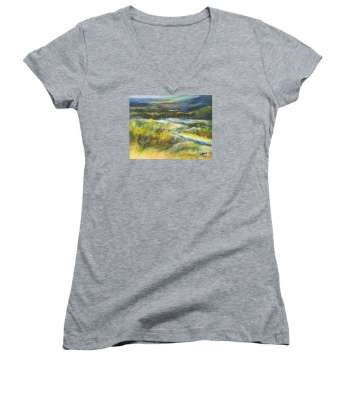 Blue Meadows Women's V-Neck T-Shirt