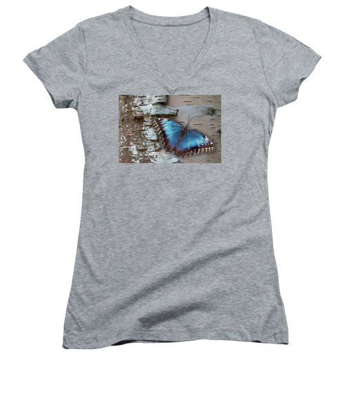 Blue Morpho Butterfly On White Birch Bark Women's V-Neck T-Shirt