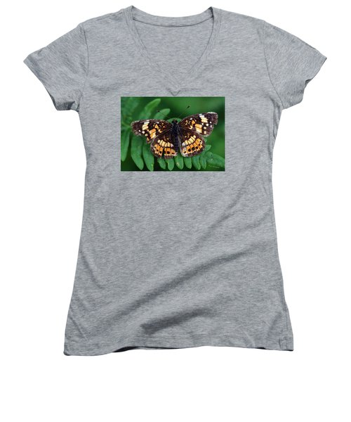 Women's V-Neck T-Shirt (Junior Cut) featuring the photograph Blue Ridge Butterfly by Kay Lovingood