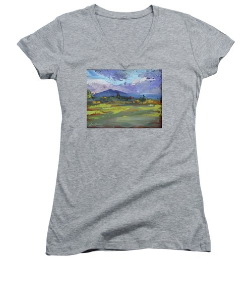 Blue Ridge Parkway Lookout Women's V-Neck (Athletic Fit)