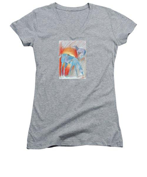 Blue Roans Women's V-Neck T-Shirt
