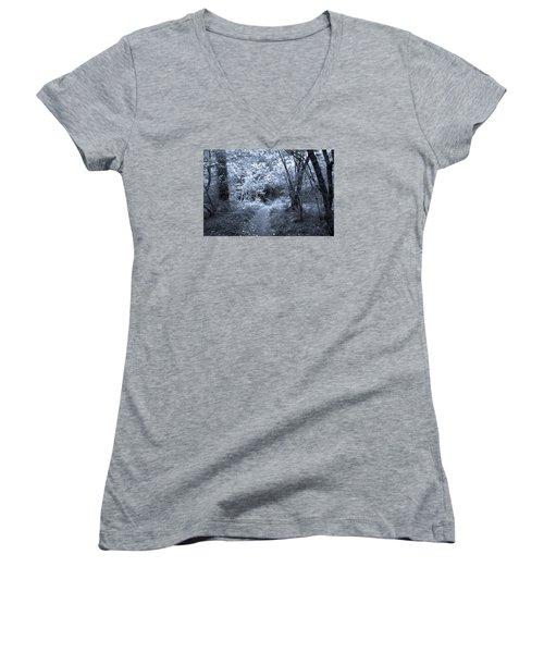 Blue Wood Women's V-Neck T-Shirt