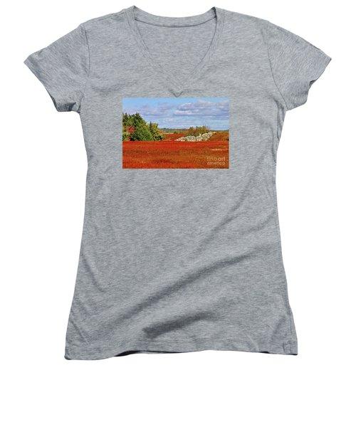 Blueberry Field Women's V-Neck T-Shirt