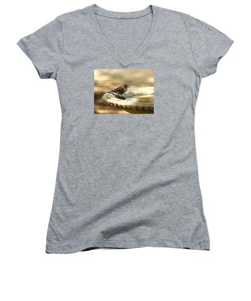 Women's V-Neck T-Shirt (Junior Cut) featuring the photograph Bluebird Bath Time by Sheila Brown